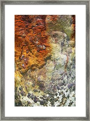 Detail Of A Rusted Dock Pier II Framed Print