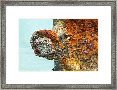 Detail Of A Rusted Dock Pier Iv Framed Print