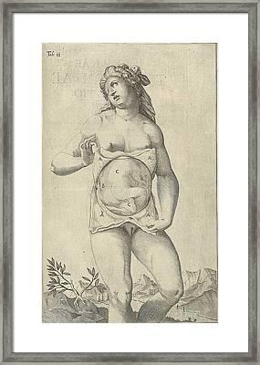 Development Of The Fetus. Female Figure Framed Print by Everett