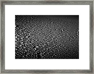 Dew Drops Framed Print by Sumit Mehndiratta
