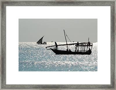 Dhows Framed Print by Alan Clifford
