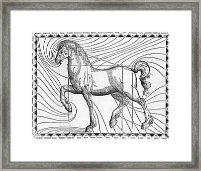 Diagram Of The Well-proportioned Horse Framed Print