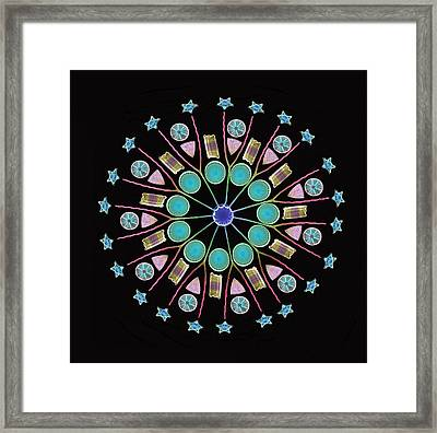 Diatom Assortment, Sems Framed Print
