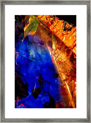 Dichotomy 2 Framed Print by Colleen Cannon