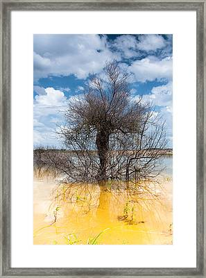Framed Print featuring the photograph Die Standing by Edgar Laureano