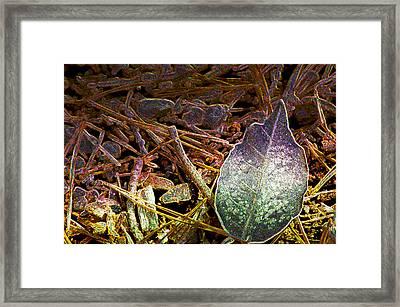 Digital Fall Framed Print by LeeAnn McLaneGoetz McLaneGoetzStudioLLCcom