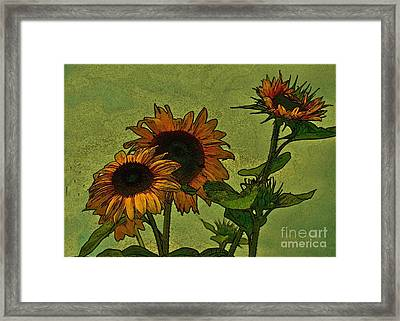 Digital Sunflowers Framed Print by David  Hubbs