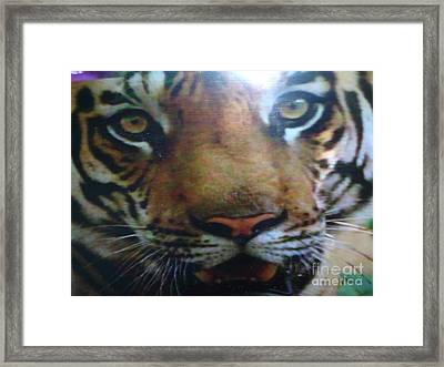 Digitalphoto Framed Print by Indrani Moitra