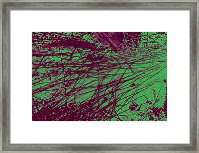 Digitized Nature Framed Print by Colleen Cannon