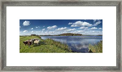 Dike Around Botshol Framed Print by Marijke Mooy Photography