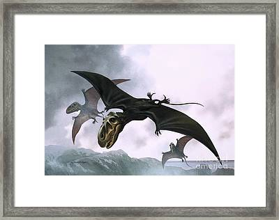 Dimorphodon Framed Print by William Francis Phillipps