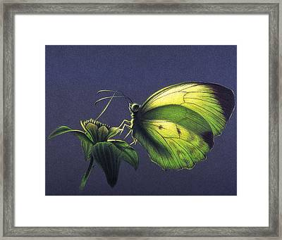 Framed Print featuring the painting Dina Yellow by Shawn Kawa