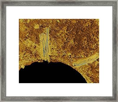 Dirty Plughole Framed Print by Volker Steger