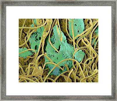 Dirty Scouring Pad Framed Print by Volker Steger