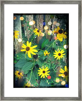 Dirty Susan Framed Print by Laura Brightwood