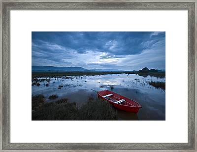 Discover The Colors In Your Life Framed Print by Ng Hock How