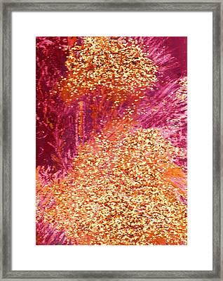 Discovering Gold Framed Print by Anne-Elizabeth Whiteway