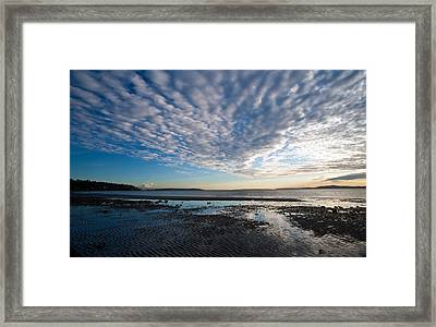 Discovery Park Beach Sunset Framed Print by Mike Reid