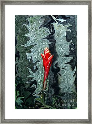 Disney Flower Framed Print by Barry Shaffer