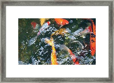 Framed Print featuring the photograph Distortion by Dan Menta