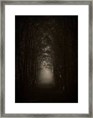 Disturbing Beauty Framed Print by Lourry Legarde
