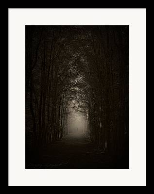 Haunted Forest Framed Prints
