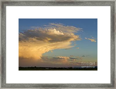 Dive Into The Night Framed Print