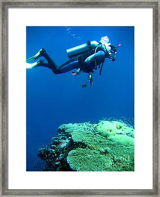 Diver In Deep Framed Print by MotHaiBaPhoto Prints