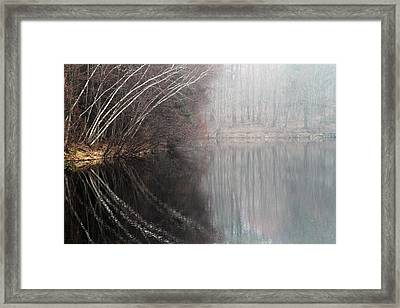 Divided By Nature Framed Print by Karol Livote