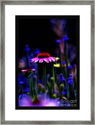 Divine Spirit Of Mother Earth Framed Print