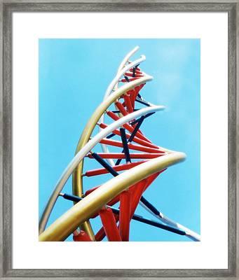 Dna Sculpture Framed Print by Victor Habbick Visions