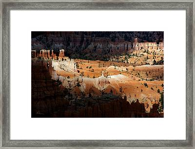 Framed Print featuring the photograph Do You Bielive In Magic by Vicki Pelham
