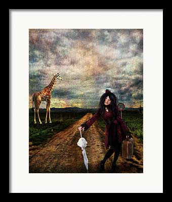 Knows The Way Framed Prints