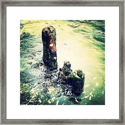 Dock Remnant Framed Print