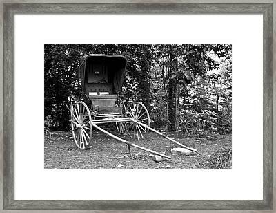 Doctor's Buggy Framed Print by Betsy Knapp