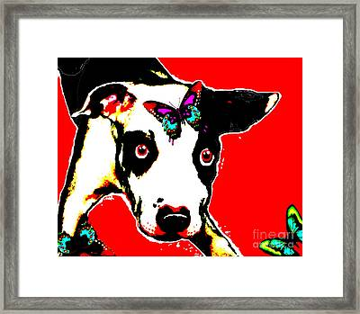 Framed Print featuring the painting Dog And Butterfly by Jann Paxton
