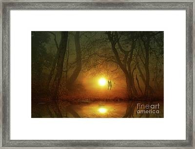 Dog At Sunset Framed Print by Bruno Santoro