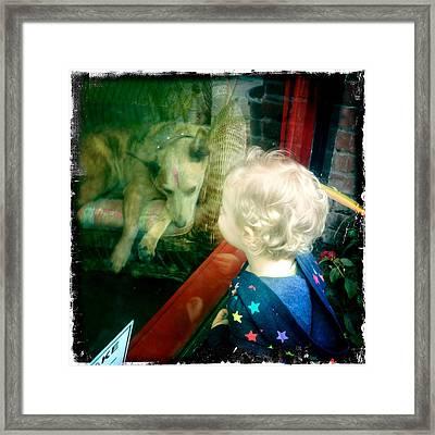 Dog In Window Framed Print