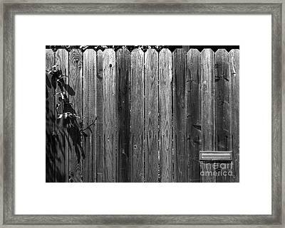 Dog Inside. Leave Mail In Yard. Framed Print by CML Brown