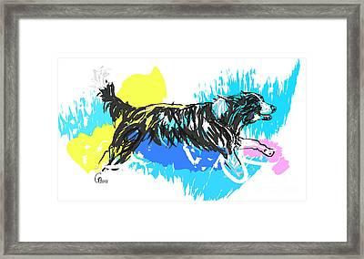 Dog Running In Water Framed Print