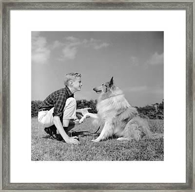 Dog Training Framed Print by Three Lions