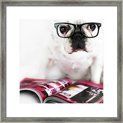 Dog With Glasses Framed Print by Retales Botijero