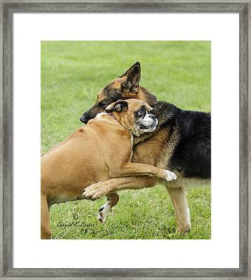 Doggie Love Framed Print