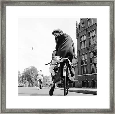 Doggy Bag Framed Print by Harry Kerr