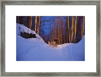 Dogs Pull A Sled Over Snow Framed Print