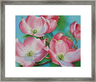 Dogwood Afternoon Framed Print