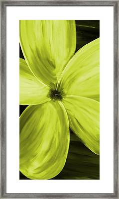 Dogwood Bloom Yellow Framed Print by Mark Moore