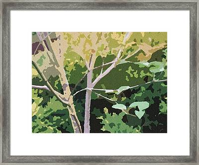 Dogwood I Framed Print by Katharine Birkett