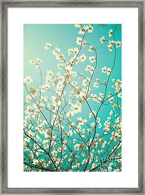 Dogwood Tree Framed Print by Kim Fearheiley