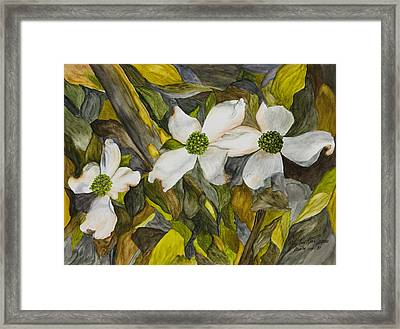 Dogwoods Framed Print by Mary Ann King